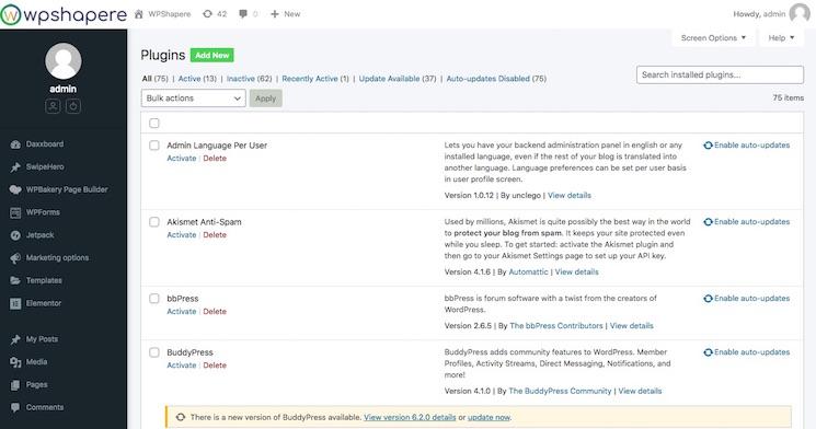 WordPress plugin auto update