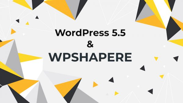 WordPress 5.5 – New features, New Opportunities